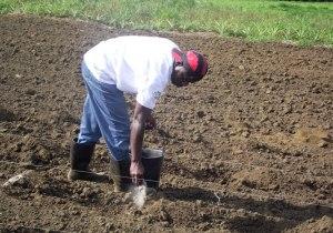 Ação social implantada em Angola tem como inspiração iniciativas fomentadas no Baixo Sul da Bahia