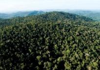 Cuidar do meio ambiente, do homem e de seus negócios