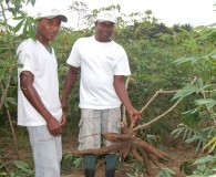 Parceria com Seagri visa capacitar agricultores