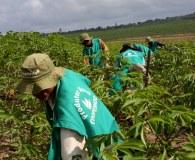 Trajetória em prol do desenvolvimento rural