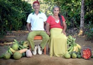 Programa de Aquisição de Alimentos já envolve mais de 700 famílias no Baixo Sul da Bahia