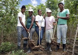 Parceria com BNDES permitirá implantação de nova fábrica de farinha de mandioca