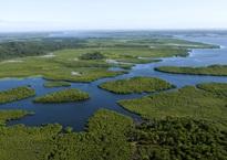 Sustentabilidade - Fundação Grupo Boticário de Proteção à Natureza apoia Organização de Conservação da Terra