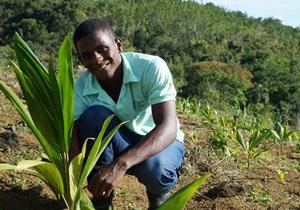 Jovens empresários rurais concluem formação