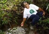 Meio Ambiente - Sinergia em prol da sustentabilidade
