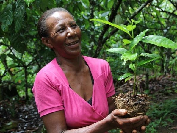 Conservação ambiental é foco de ações no Baixo Sul da Bahia