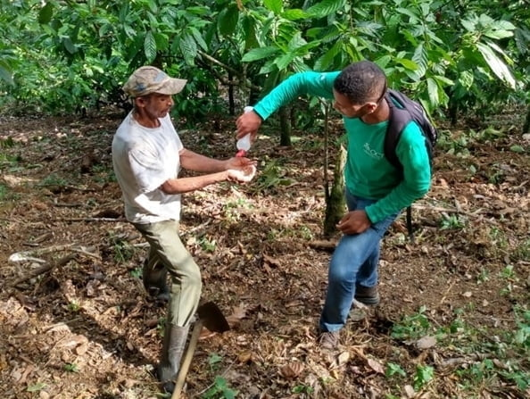 Fundación Odebrecht e instituciones asociadas adaptan rutina de trabajo durante aislamiento social