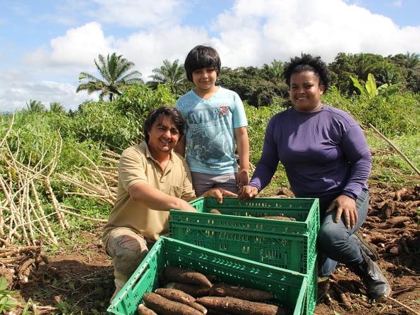 Cooperativa agrícola do Baixo Sul da Bahia comemora 20 anos com recorde de faturamento
