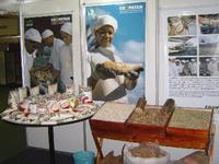Programa Terramiga garante capacitação técnica e acesso a novos mercados a pequenos produtores rurais do Baixo Sul da Bahia