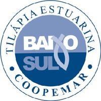 Tilápia Estuarina Coopemar começa a ser comercializada na Rede EBAL