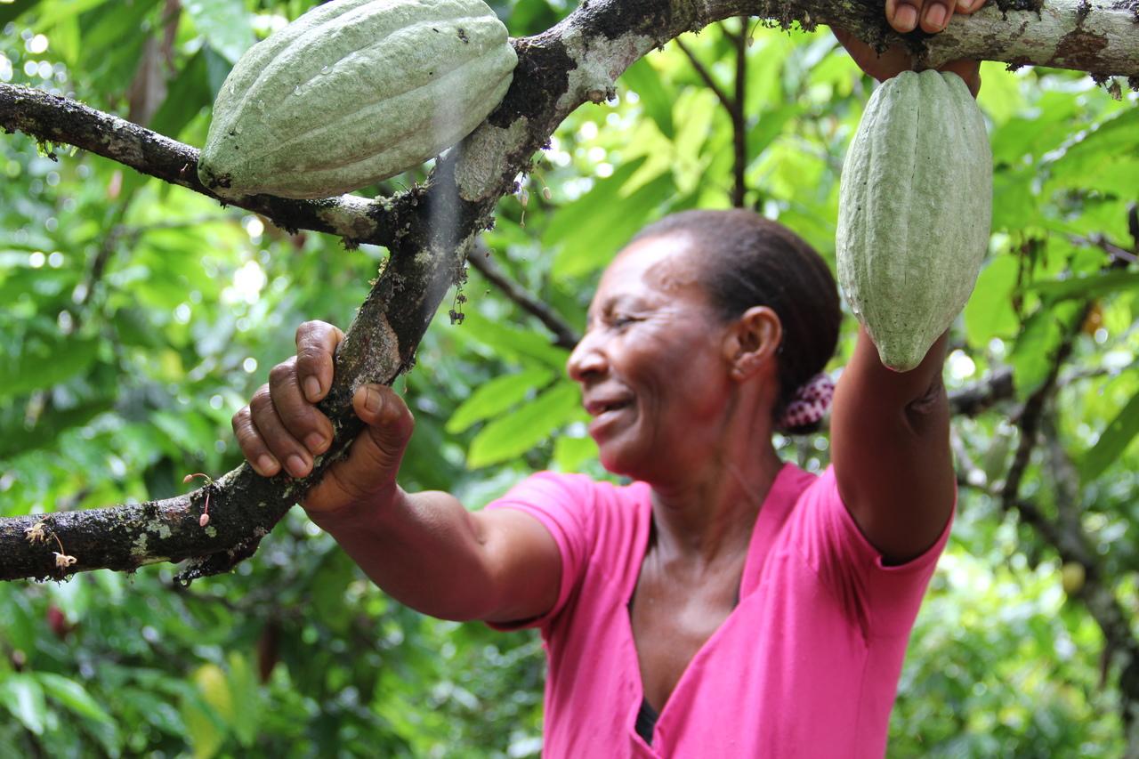 Uma mulher sorri e segura um tronco de árvore com frutos.